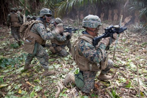 Marines Jungle
